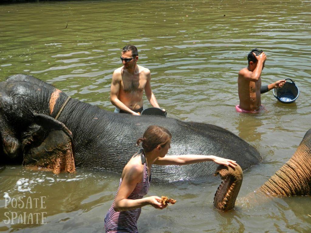 Thailand 2015-05-05 00632