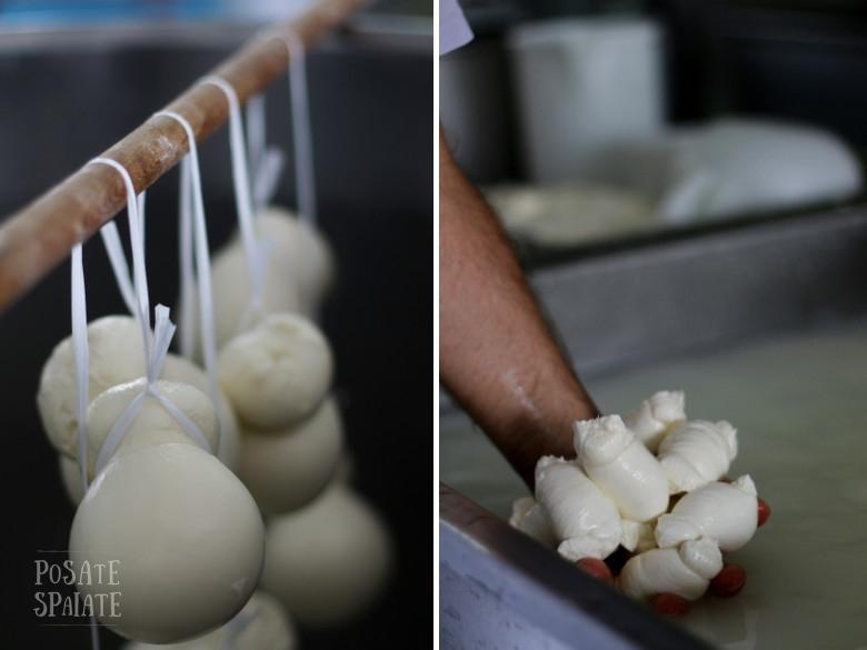 Mozzarelle artigianali in Puglia - Posate Spaiate