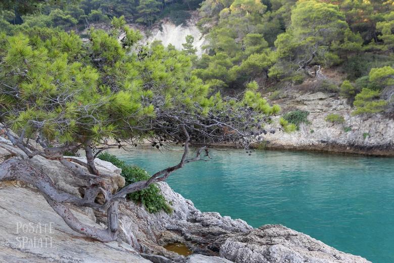 Puglia Isole Tremiti - Posate Spaiate