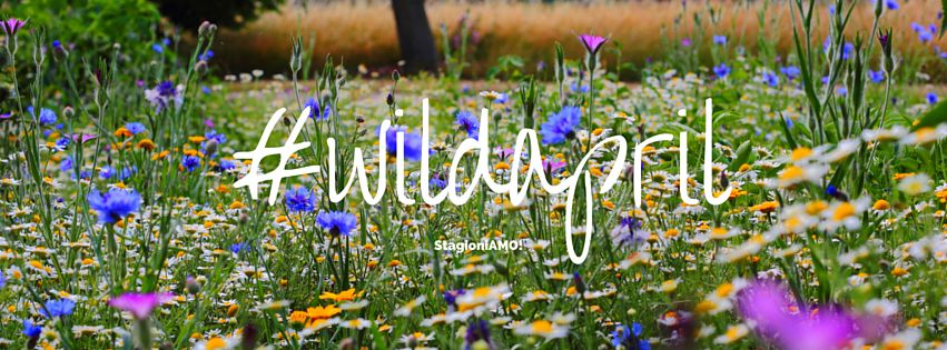 stagioniamo_wild_April