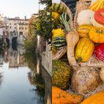 Mantova la città della cultura, delle tradizioni, e delle bellezze a cielo aperto.