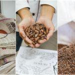 DOMORI: il cioccolato, i sogni, l'azienda